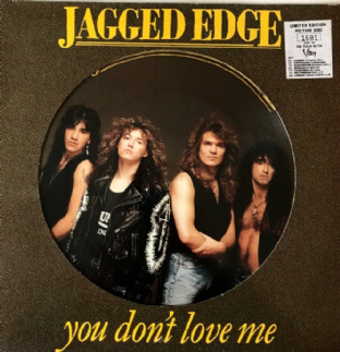 "Jagged Edge  -  You Don't Love Me (12"") (Picture Disc) (EX/VG-)"